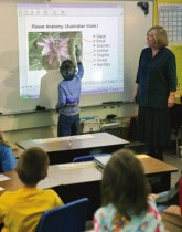 Интерактивное оборудование для школы как купить