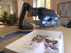 документ-камеры в школе